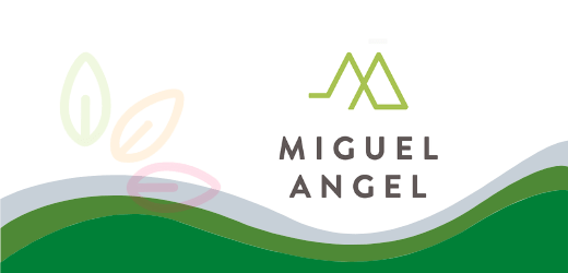 Productos Miguel Angel Light