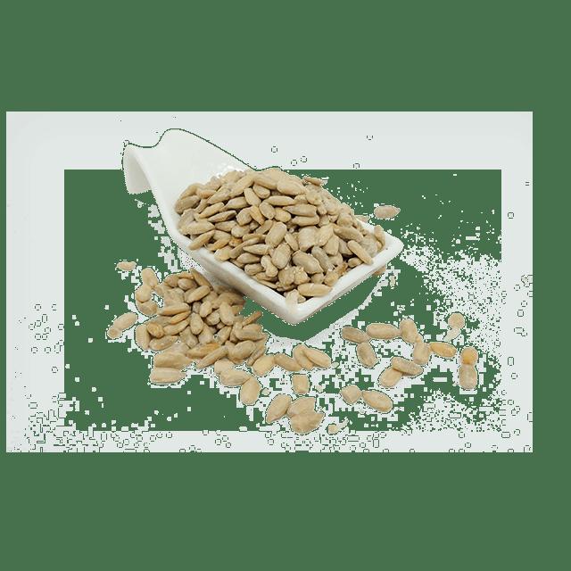 semillas-de-girasol-saludsabor-insumos